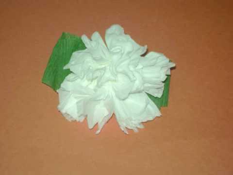 Como se hacen flores de papel crepe imagui - Como se hacen rosas de papel ...