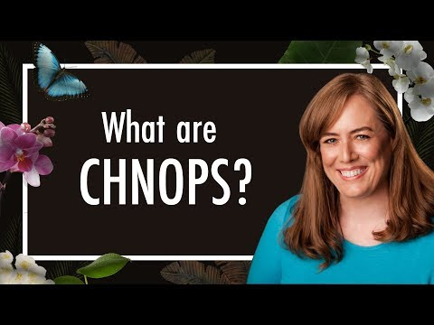 What are CHNOPS? These Chemical Elements = 98% of Life | Biology | Biochemistry