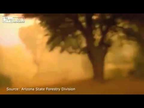 Final moments of frontline Arizona firefighters lives