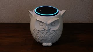 Amazon's Echo Plays Dress Up with Echo Dot (and an owl)