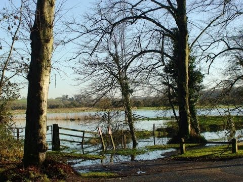 River Arun overflows and floods the surrounding countryside (Sussex England) - Jan 2014