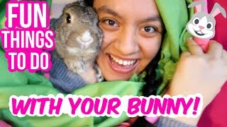 Fun Things You Can Do With Your Bunny