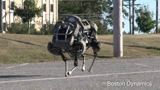Galloping Robot