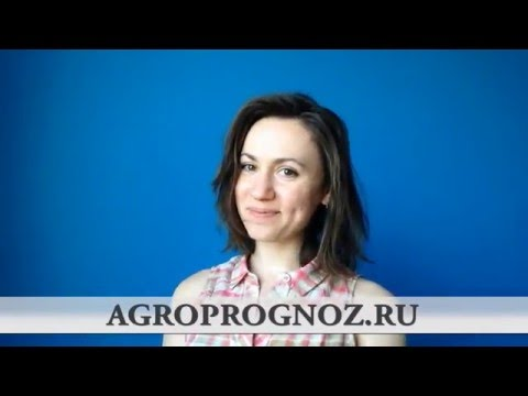 АГРОПРОГНОЗ В РОССИИ - агромаркетинг и бизнес-аналитика / AGROPROGNOZ Centre for Russian Agriculture