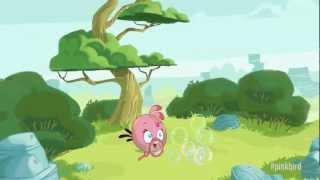 Angry Birds - Pink Bird