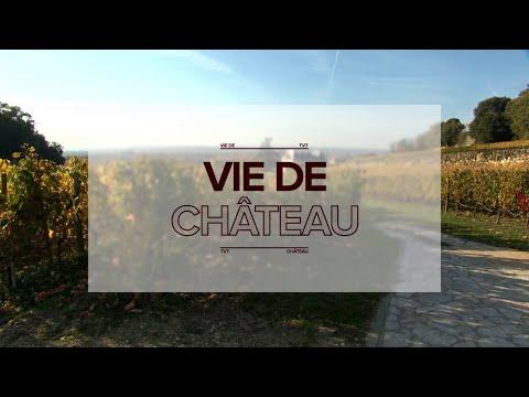 Vie de Château - Les AOP Sauternes et Barsac