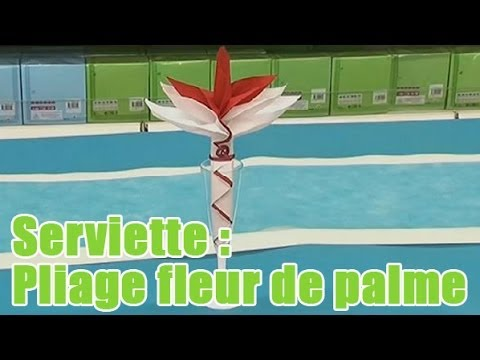 Plier vos serviettes en fleur de palme