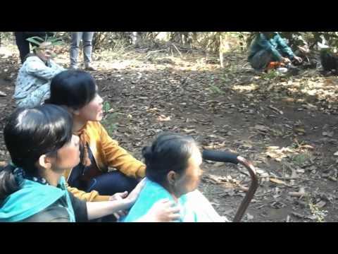 Cưỡng chế đất ở Xã Bảo Vinh, Thị Xã Long Khánh, Đồng Nai