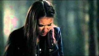 The Vampire Diaries Elena Loves Damon