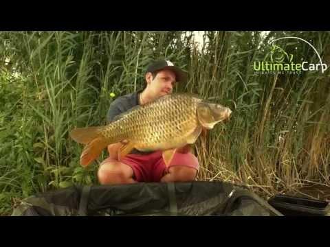 Letné chvile pri vode (Summer fishing moments)