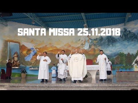 Santa Missa | 25.11.2018 | Padre José Sometti | ANSPA