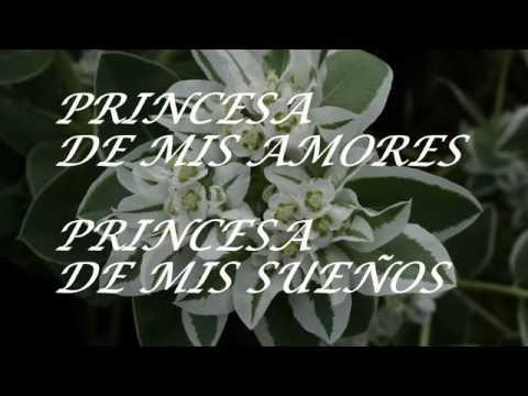 for El jardin de mis suenos