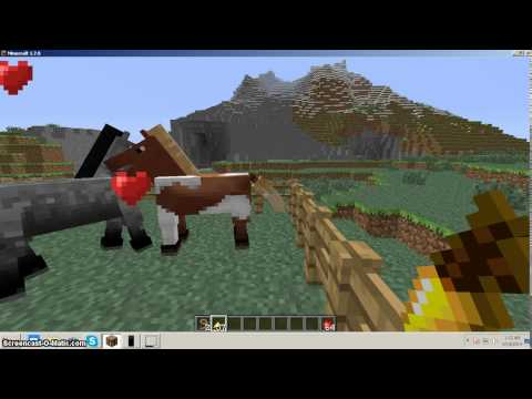 Minecraft 1.7.9 Horse Breeding Tutorial (the right way to do it)
