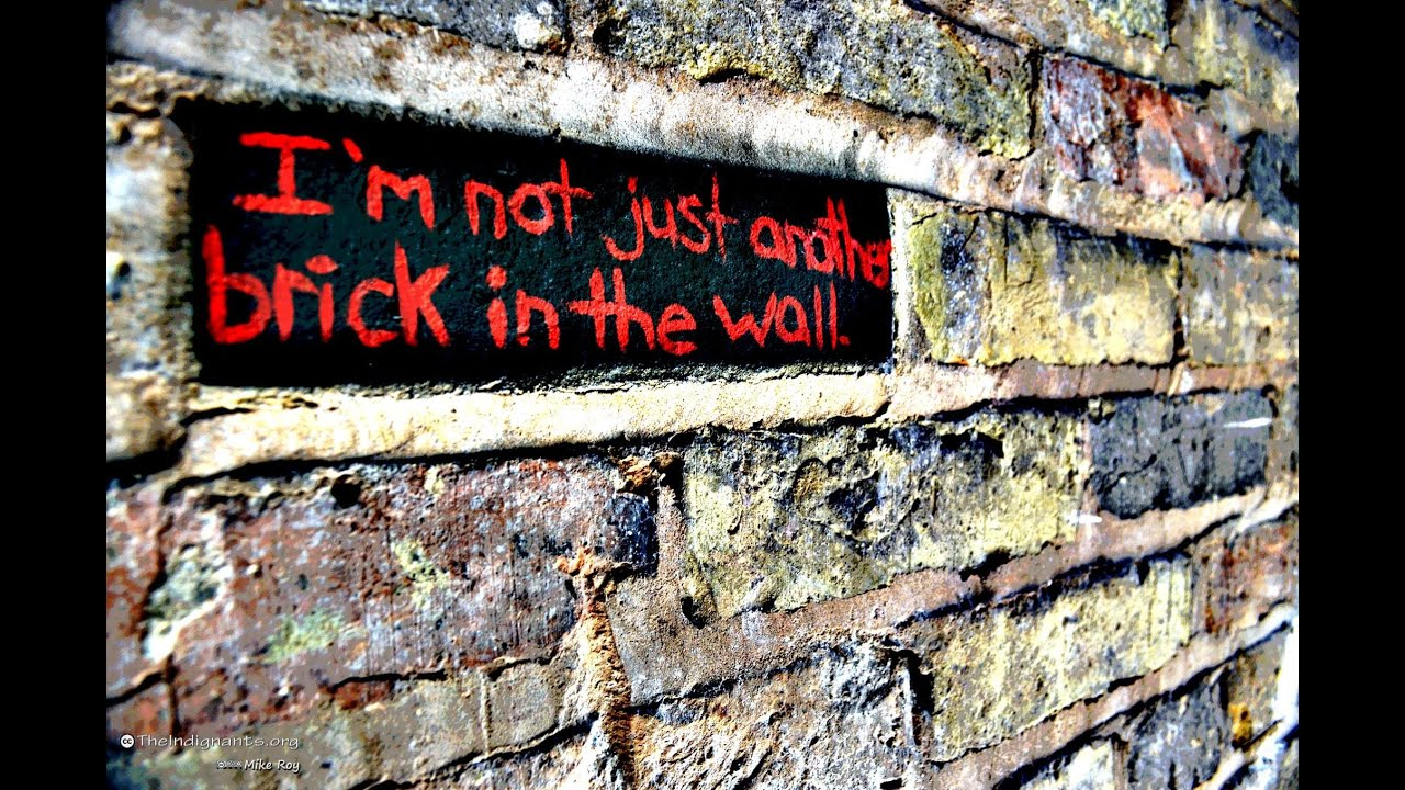 Not another brick in the wall the indignants youtube
