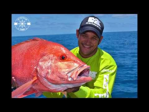 Townsville offshore Maggie shoals