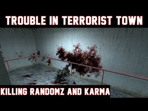 Killing Randomz and Karma - TROUBLE IN TERRORIST TOWN