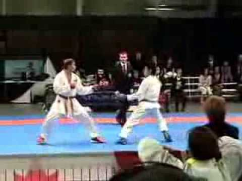 Men's Team Kumite (final) - Wado-kai World Championships 2008
