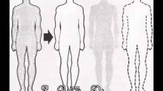 El Hombre Es Tripartito (Cuerpo, Alma Y Espiritu) No Se