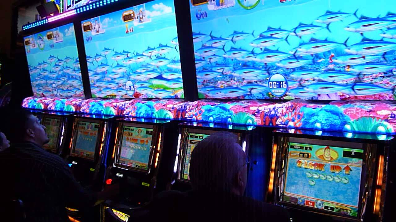paradise fishing slot machine bonus youtube
