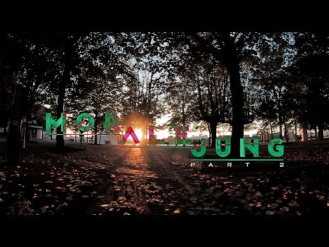 MOR ALE JUNG / part 2 / Parkour & Free Running Fails