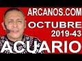 Video Horóscopo Semanal ACUARIO  del 20 al 26 Octubre 2019 (Semana 2019-43) (Lectura del Tarot)