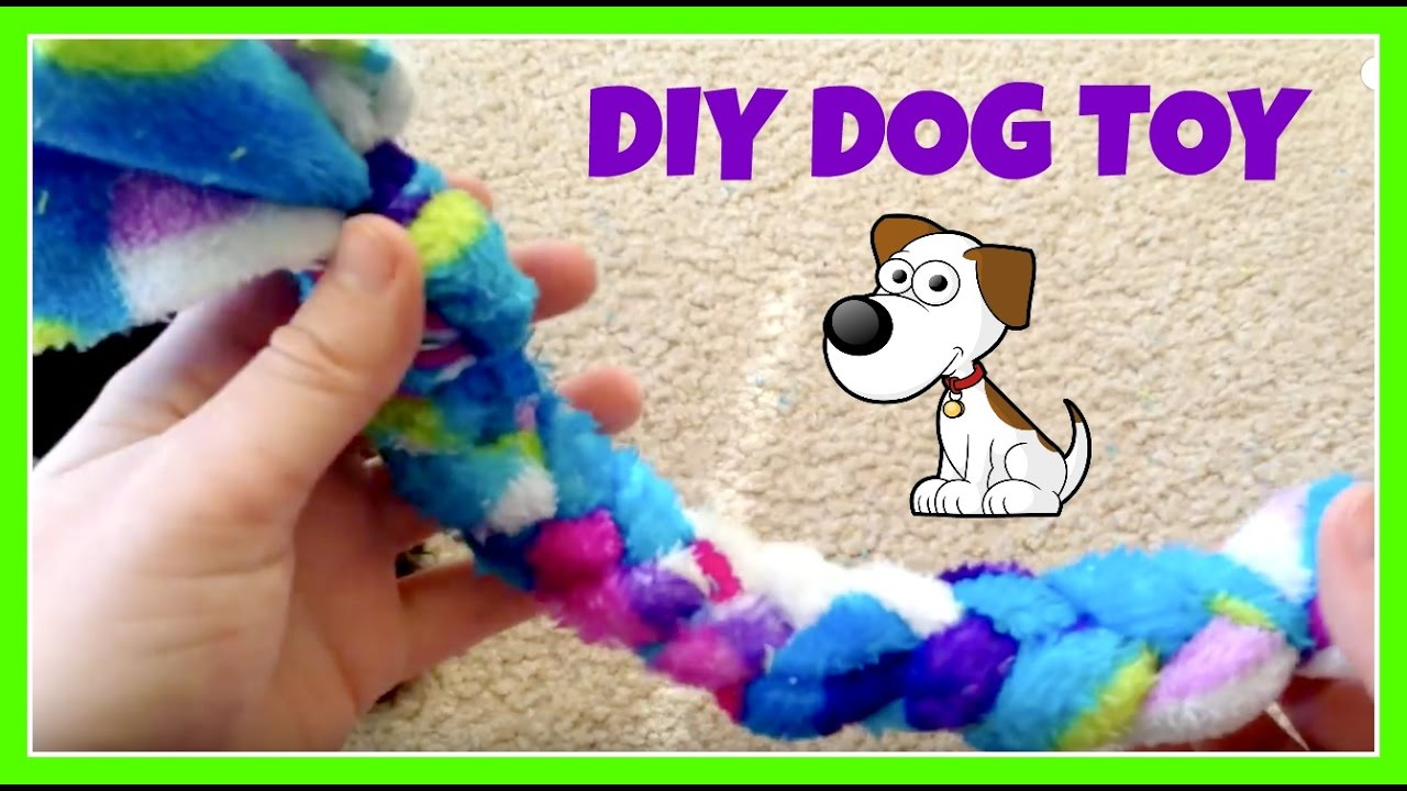 Easy diy dog toy youtube for Easy diy toys