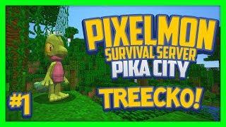 Pixelmon Server (Minecraft Pokemon Mod) Pika City Lets