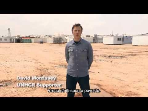 David Morrissey - Fiecare poveste merită ascultată