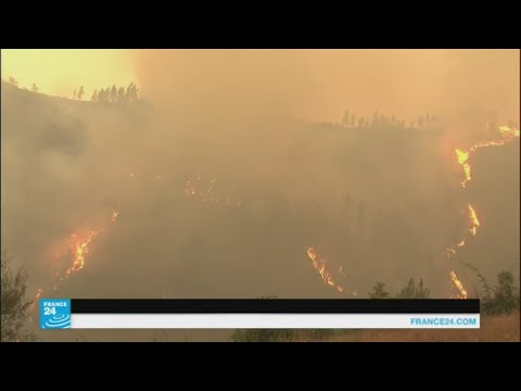 الحرائق مستمرة في التهام غابات البرتغال