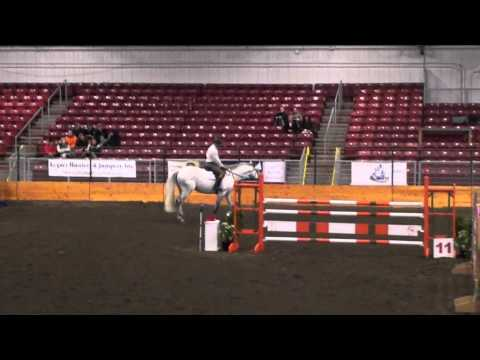 Cornet Fever-1.30 Meter Jumpers