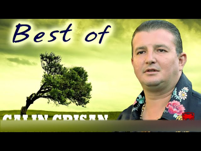 BEST OF CALIN CRISAN NOU 2014