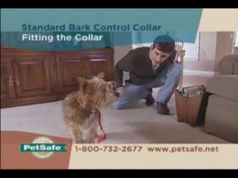 PetSafe Standard Bark Control Collar Tips - www.petsafe.net