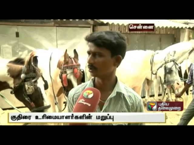 Controversy regarding horse ride in Marina