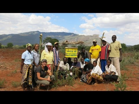 African honey bees change lives and save elephants SAVE THE ELEPHANTS