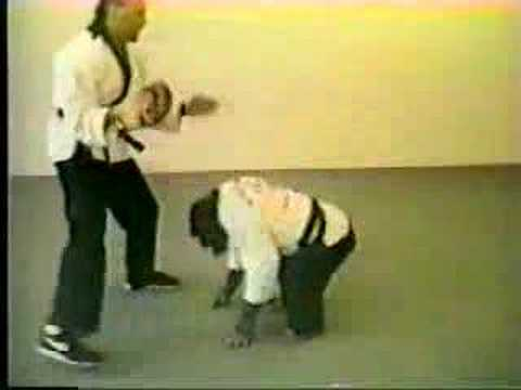 Funny - Banned Commercials - Real Monkey Doing Kung Fu ...