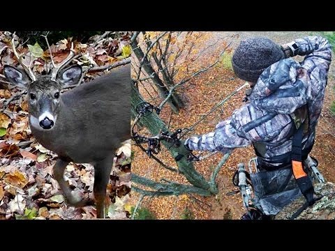 Bowhunting Whitetails 2013
