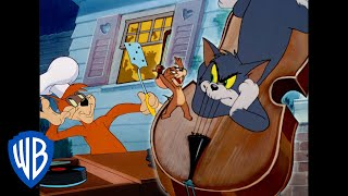 Tom a Jerry - To bola noc