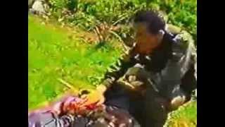 Video e rralle – UÇK – Lufta për tërheqjen e shpëtimin e të plagosurve ne Koshare