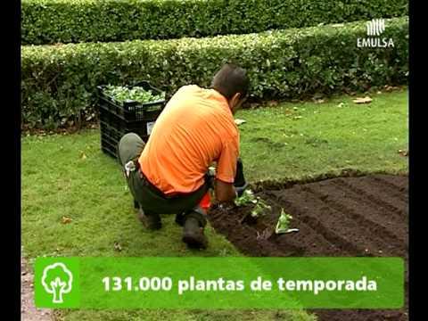 for Decoracion de parques y jardines