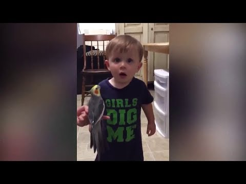 FUNNY 2019 Kids And Fish Become Best Friend - Big Family Fun