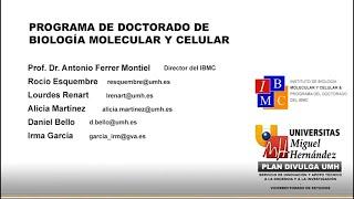 Doctorado IBMC - Presentación Programa de Doctorado IBMC