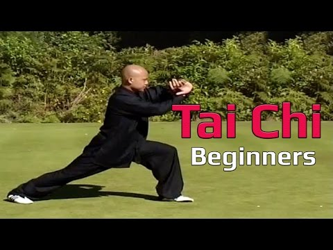 sil lim tao form instruction