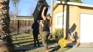 [White Trash Can Push Prank] Video