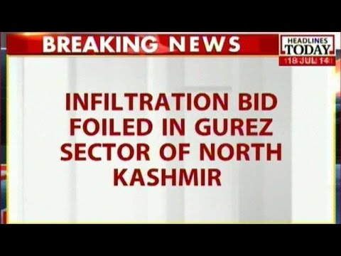 Infiltration bid foiled in Gurez sector of North Kashmir