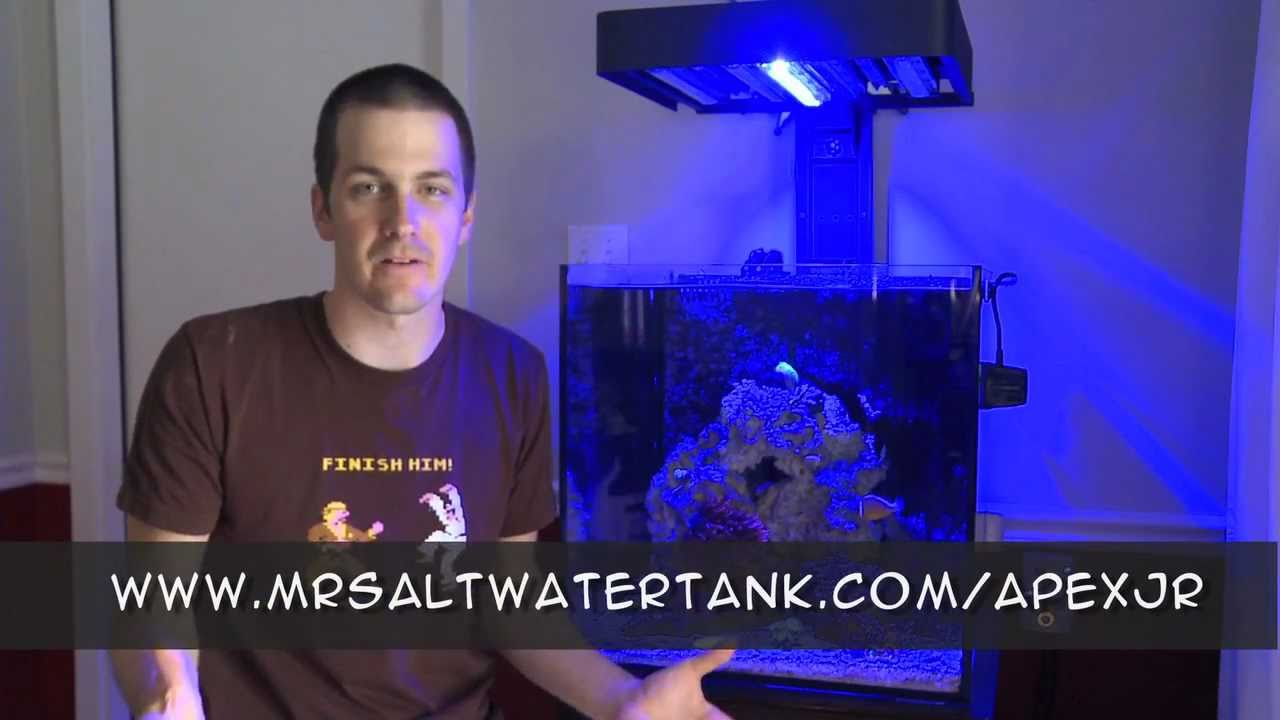 Mr saltwater tank 39 s review of the apex jr youtube for Google fish tank mrdoob