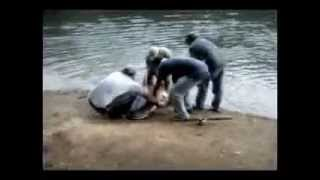 CATCHING A PIRAÍBA - RIVER MONSTERS