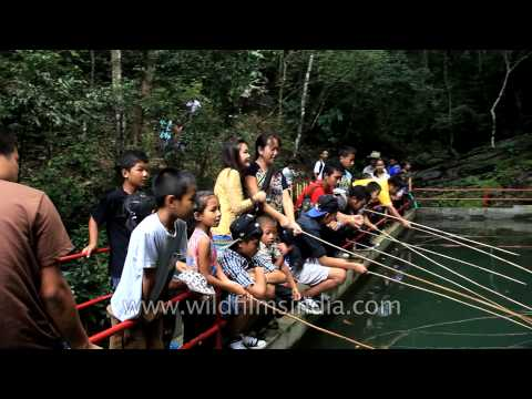 Mizo youngsters taking part in angling competition