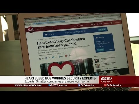 Heartbleed Bug a Grave Concern for Security Experts