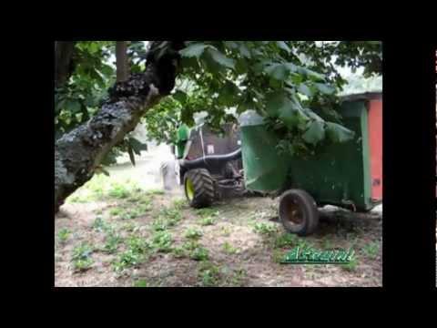 Raccolta Nocciole - Portattrezzi semovente cabinata scarrabile