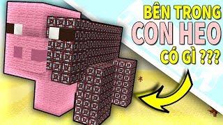 Minecraft   Bên Trong CON HEO Có Gì??